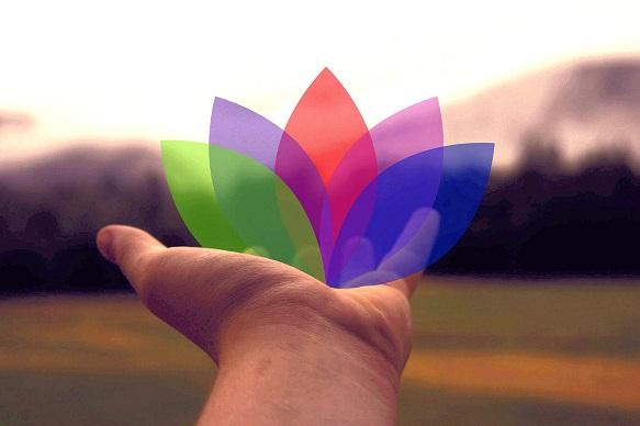 50 Hand-lotus_HiResB2